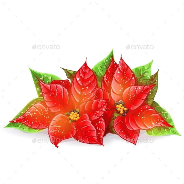 GraphicRiver Christmas Flowers 9702892