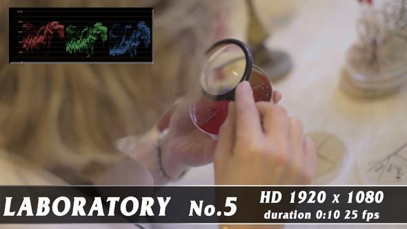 VideoHive Laboratory 5 9704251