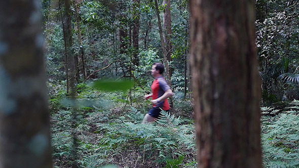 VideoHive Running Through The Forest 9705526