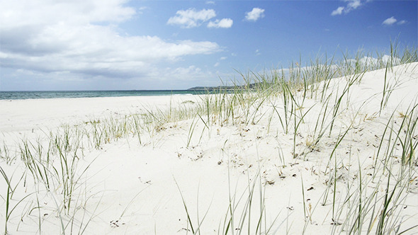 VideoHive Beach 9707226