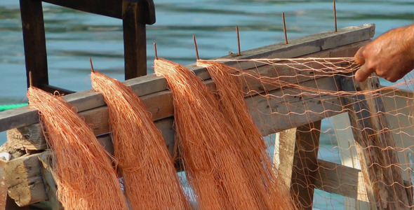 VideoHive Fishnets Fishing Lines 9708432