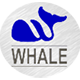 whalestainles