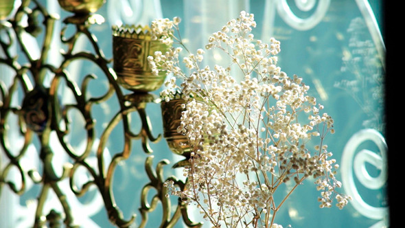 VideoHive White Flowers In A Vase 9711841