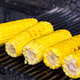 cooking corn on the grill in the restaurant - PhotoDune Item for Sale