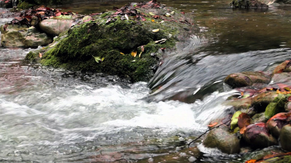 VideoHive Fresh Creek Cascade in Autumn 9713329