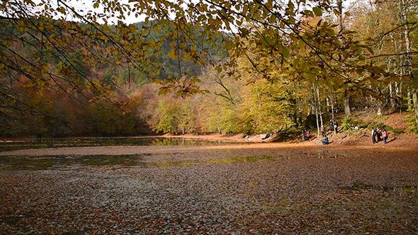 VideoHive Beautiful Lake at The Autumn 1 9715191