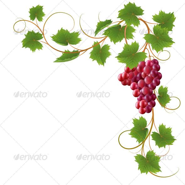 GraphicRiver Vine 123499
