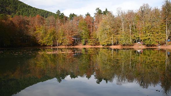 Beautiful Lake at The Autumn 2