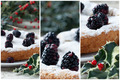 Blackberry Cake Collage - PhotoDune Item for Sale