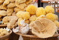 Baskets with natural marine sponges - PhotoDune Item for Sale