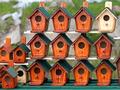 Birdhouses - PhotoDune Item for Sale