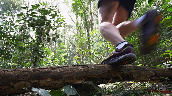 Runner Jumping Over a Tree in the Rain Forest