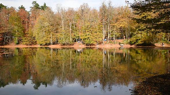 VideoHive Beautiful Lake at The Autumn 3 9721171
