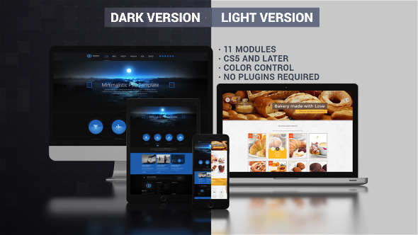 Website Presentation Dark & Light