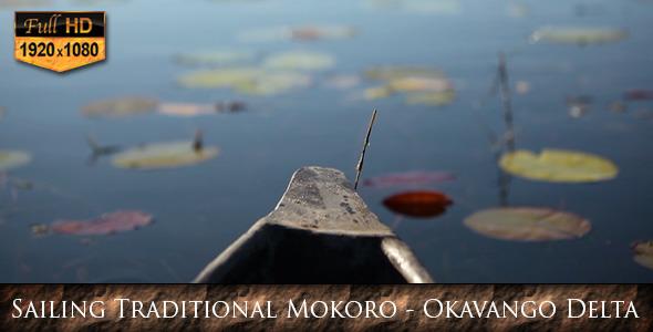 Sailing Traditional Mokoro Okavango Delta