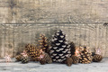 Christmas decoration with cones - PhotoDune Item for Sale