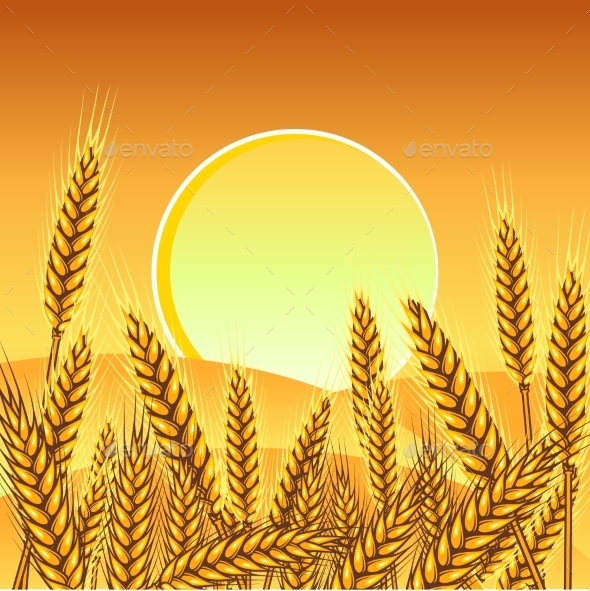 GraphicRiver Background with Ripe Yellow Wheat Ears 9735061