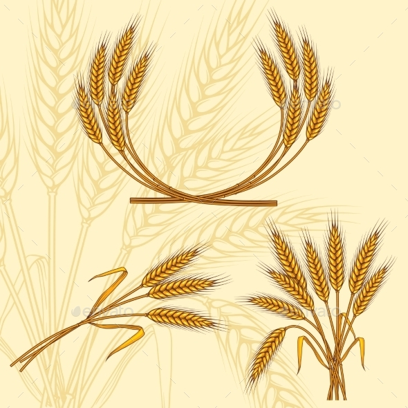 GraphicRiver Background with Ripe Yellow Wheat Ears 9735064