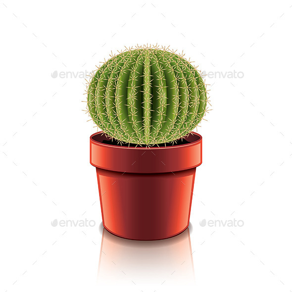 GraphicRiver Cactus 9738281
