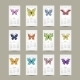 2015 Butterfly Calendar - GraphicRiver Item for Sale
