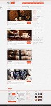 05_portfolio-big-with-sidebar.__thumbnail