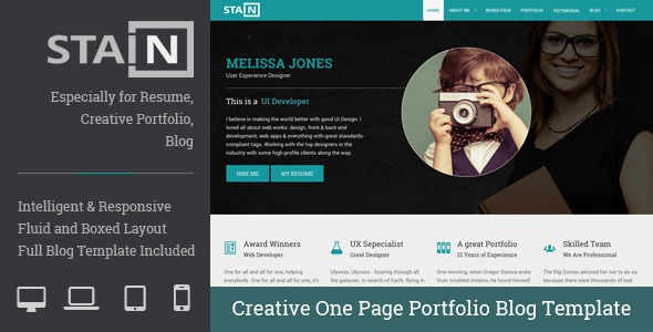 ThemeForest Stain Creative One Page Portfolio Blog Template 9742110