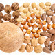 variety of nuts in shells - PhotoDune Item for Sale