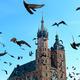 Krakow landmarks - PhotoDune Item for Sale