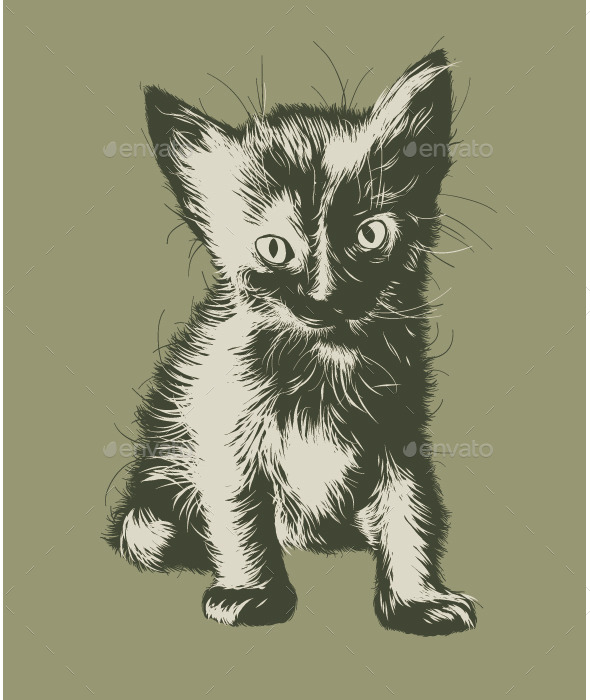 GraphicRiver Kitten 9749502