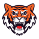 TigerSports - GraphicRiver Item for Sale