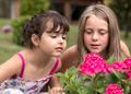 Little girls portrait - PhotoDune Item for Sale