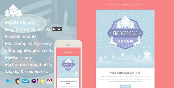 ThemeForest Promo Holiday Email Template & Builder Access 9763115