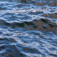 Sea Water Surface - VideoHive Item for Sale