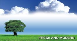 Fresh and Modern Websites