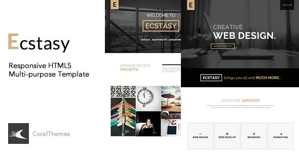 ThemeForest Ecstasy Responsive HTML5 Multi-purpose Template 9766913