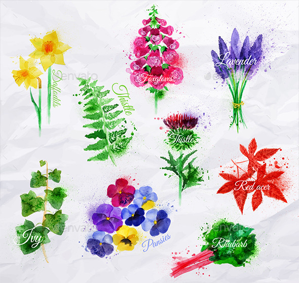 GraphicRiver Watercolor Plants and Flowers 9767660
