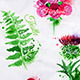 Watercolor Plants and Flowers - GraphicRiver Item for Sale