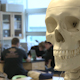 Skeleton In Science Class (2 of 3) - VideoHive Item for Sale