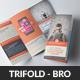 Website Design Agency Trifold Brochures Bundle - GraphicRiver Item for Sale