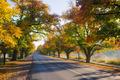 Maldon in Autumn - PhotoDune Item for Sale