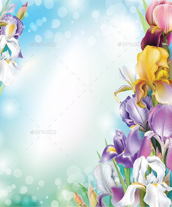 GraphicRiver Background with Iris Flowers 9783893