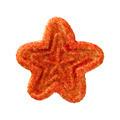 Christmas Star Cookie - PhotoDune Item for Sale