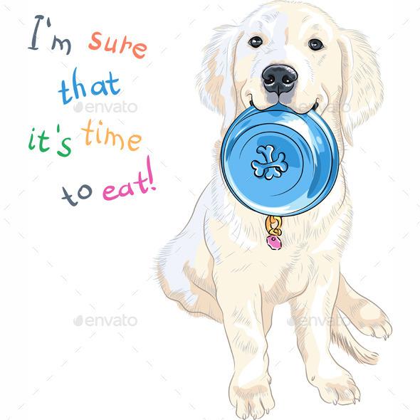 Labrador Retriever with Bowl for Food