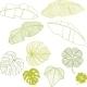 Leaves Set - GraphicRiver Item for Sale