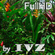 Tropical Flowers - VideoHive Item for Sale
