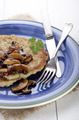 potato pancake on a blue plate - PhotoDune Item for Sale