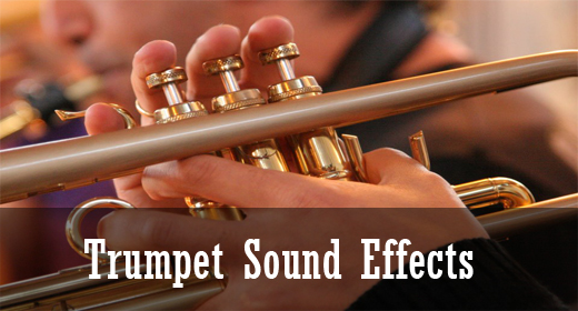 Trumpet Sound Effects