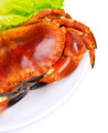Tasty boiled crab - PhotoDune Item for Sale