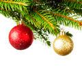 Decorative balls on fir - PhotoDune Item for Sale