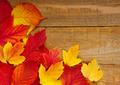 autumn leaves on wood - PhotoDune Item for Sale